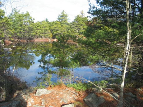 Land For Sale Mount Desert Island